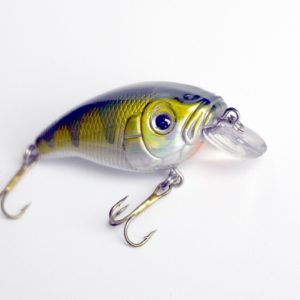 Power Catcher Big'N CrankBait