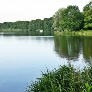 Im Sommer am See