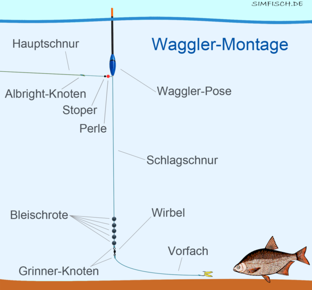 Waggler-Montage