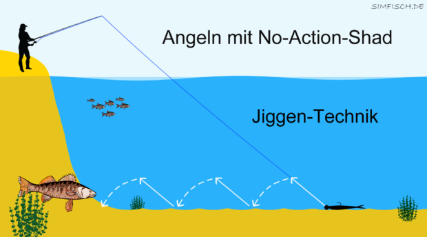 Angeln mit No-Action Shads