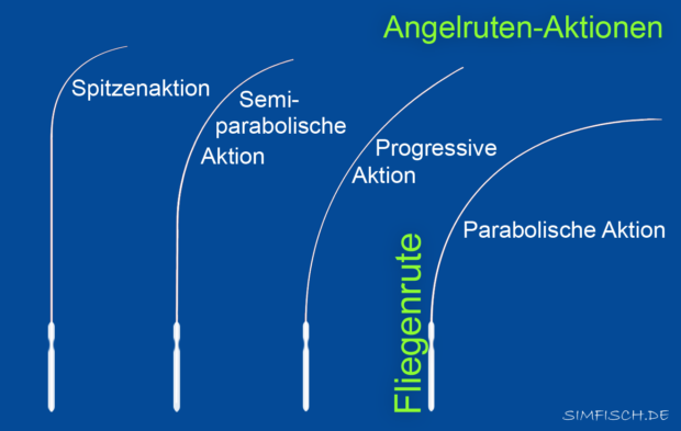 Fliegenruten-Aktion
