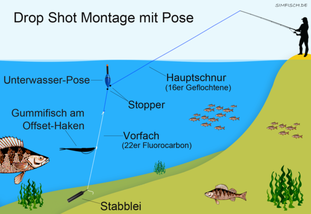 Drop Shot Montage mit Pose