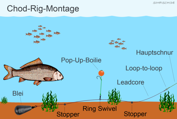 Chod-Rig-Montage