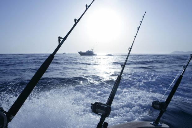 Big Game Fishing Reviere